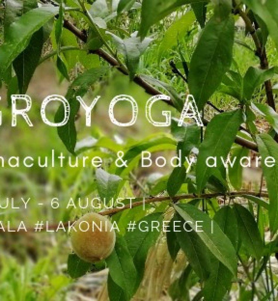 Agroyoga – Erasmus + Youth Mobility Program